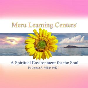 MERU LEARNING CENTERS - Guide