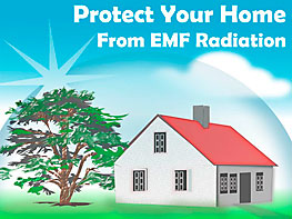 Watch Video - Make your Home an EMF-Free Zone